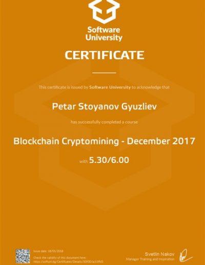 Blockchain Cryptomining